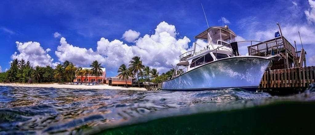 Little Cayman June