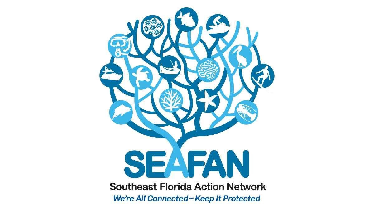 JDC Seafan Blog Feature