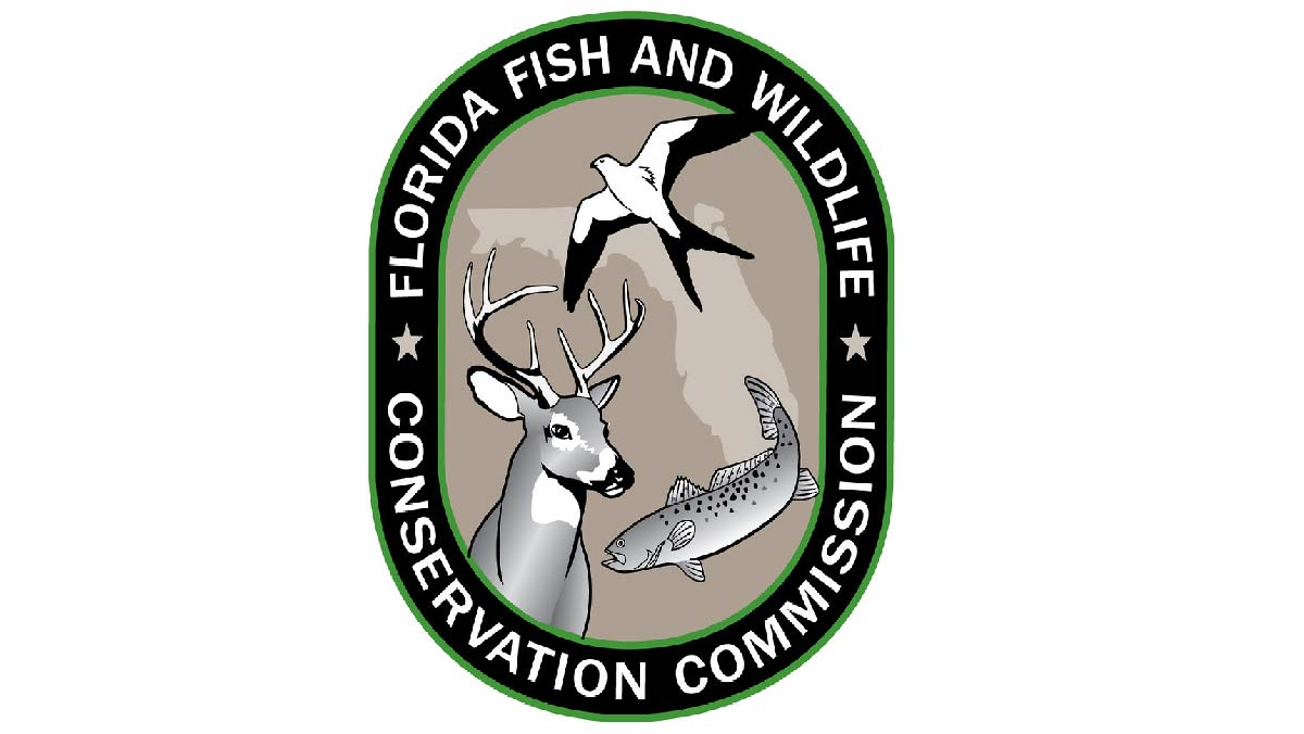 JDC FWC Blog Feature